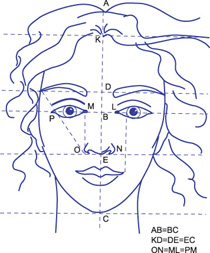 Классические пропорции лица