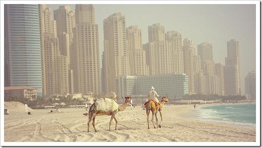 Зима в ОАЭ – пляжный сезон закрыт
